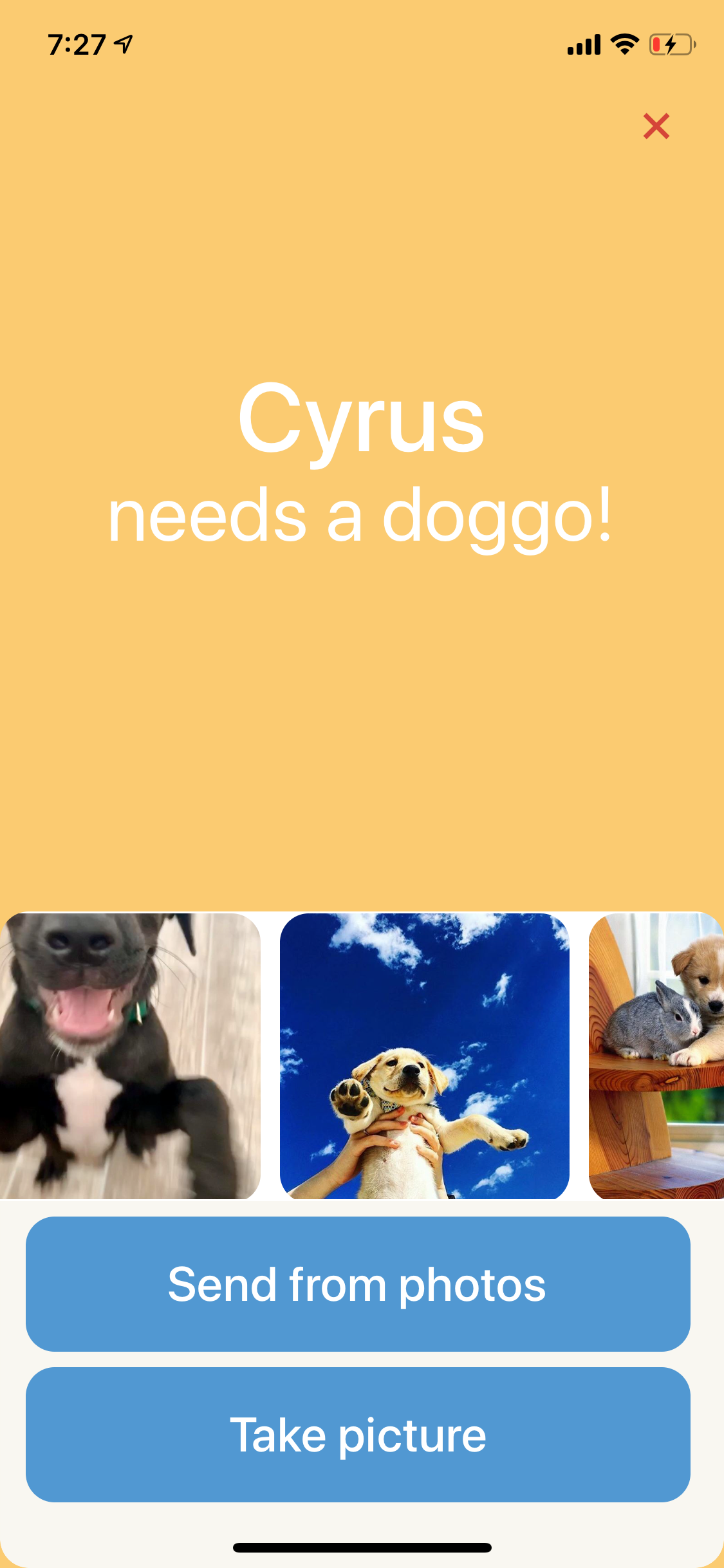 Screenshot of an iOS app with the prompt 'Cyrus needs a doggo!' with photos of dogs to choose from or a select from camera roll and take picture button